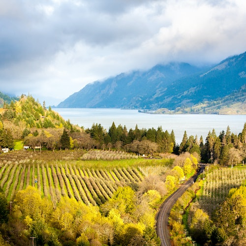 Columbia River Gorge: All-Inclusive Day Trip from Portland