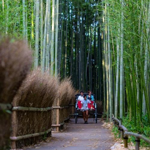 Tour de Arashiyama en rickshaw