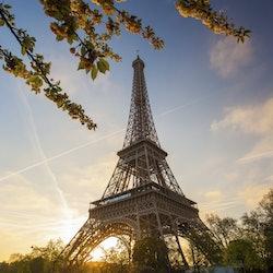 Tickets, museos, atracciones,Tickets, museums, attractions,Combinado Torre Eiffel,Autobús turístico,Nocturno,Torre Eiffel,Crucero por el Sena