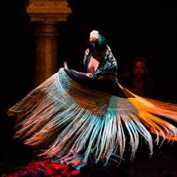 Tickets, museos, atracciones,Espectáculo Flamenco