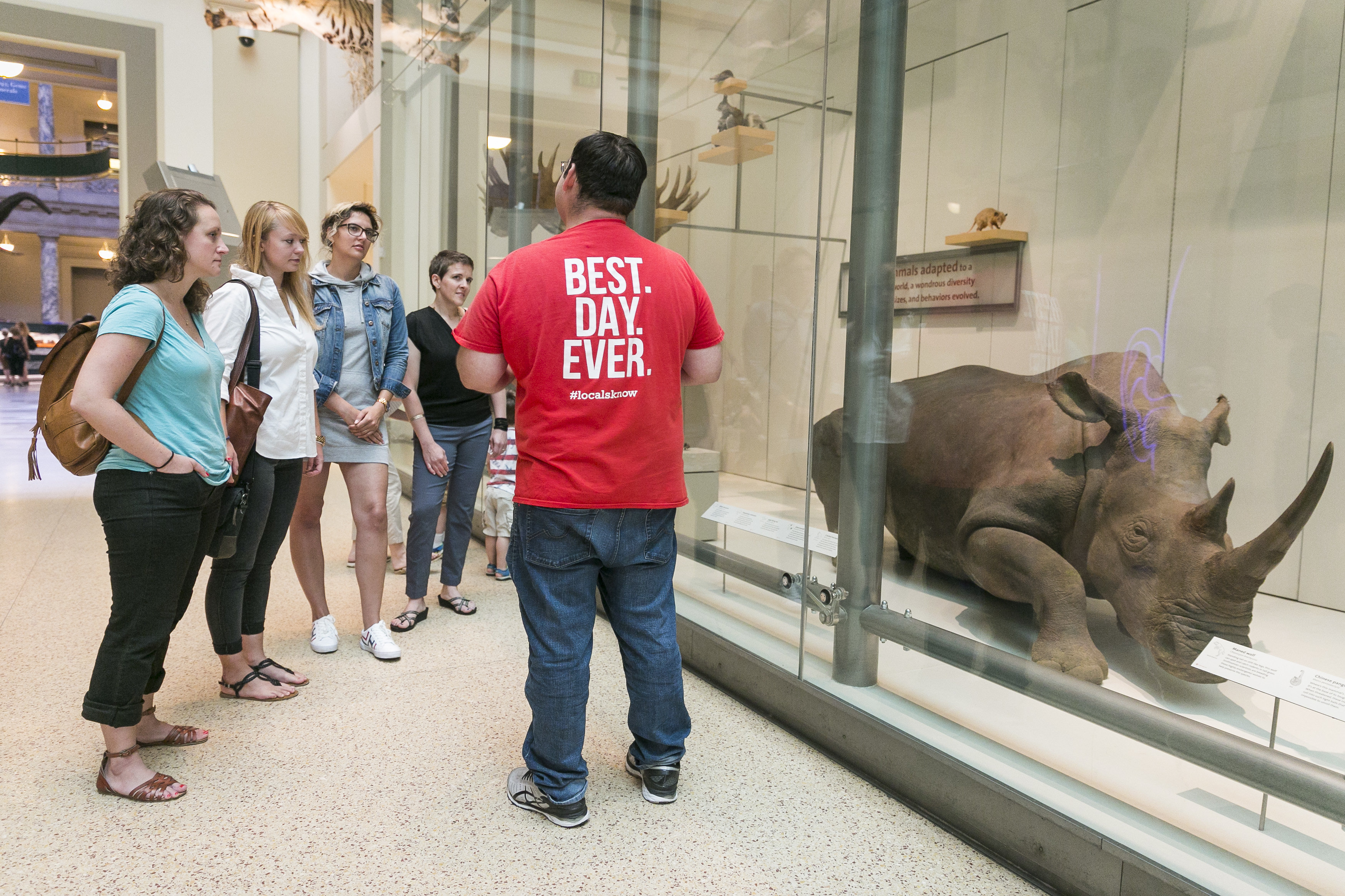 Smithsonian National Museum of Natural History: Guided Tour