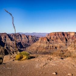 Tickets, museos, atracciones,Tickets, museums, attractions,Grand Canyon,South Rim,Gran Cañón