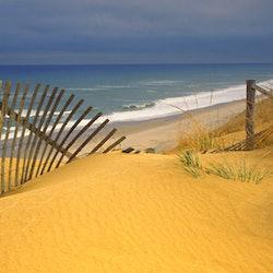 Tickets, museos, atracciones,Excursión a Cape Cod