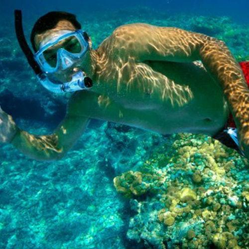Excursión de esnórquel en dos arrecifes