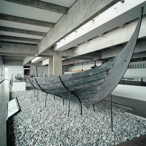 Siguiendo las huellas de los vikingos: Tour desde Copenhague