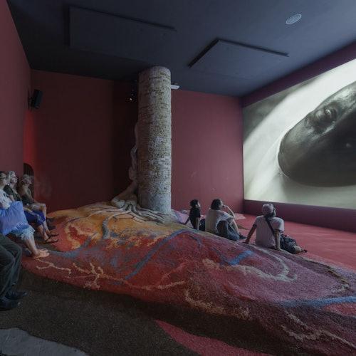 Museo Cobra
