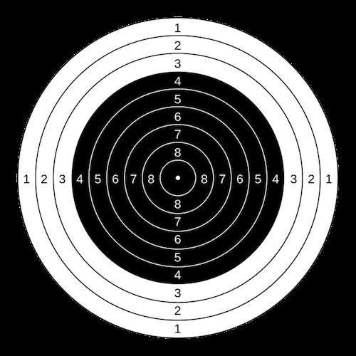 Rifle Shooting Delft