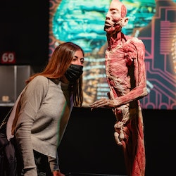 Human Bodies Exhibition: Skip The Line