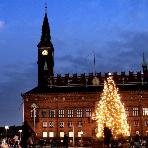 Ayuntamiento de Copenhague: Visita guiada