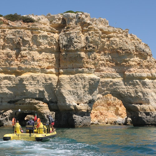 Caves and Dolphin Watching Cruise from Albufeira - Insónia (Semi-Rigid)