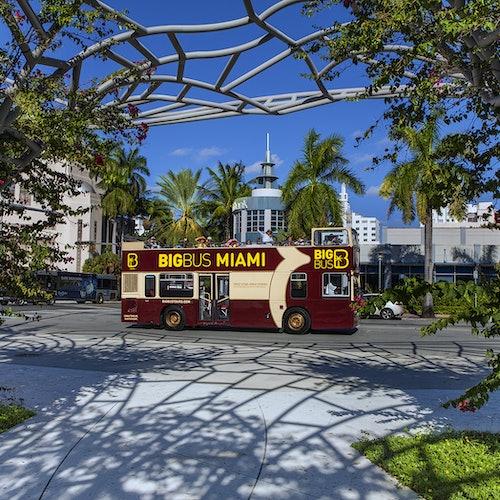 Bus turístico Miami