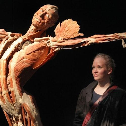 BODY WORLDS Heidelberg - Anatomía de la felicidad