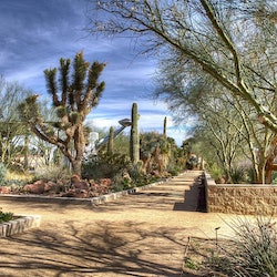 Springs Preserve & Nevada State Museum: Fast Track