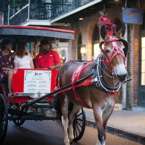 Tour fantasmal del Barrio Francés en carruaje