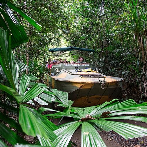 Kuranda Rainforestation & Transfer from Cairns