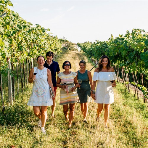 Discover Valpolicella: Winery Tour with a Winemaker