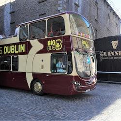 Tickets, museos, atracciones,Fábrica Guinness,Bus turístico