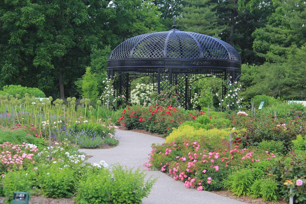 35a77c8779cd4a72b17e6e831825aec3.JPG?auto=format&fit=crop&ixlib=python 3.2.1&q=25&s=e660c6093f6c3de75c741eba4c3774f6&w=375&h=250&dpr=2 - Royal Botanical Gardens 680 Plains Road West Burlington On Canada