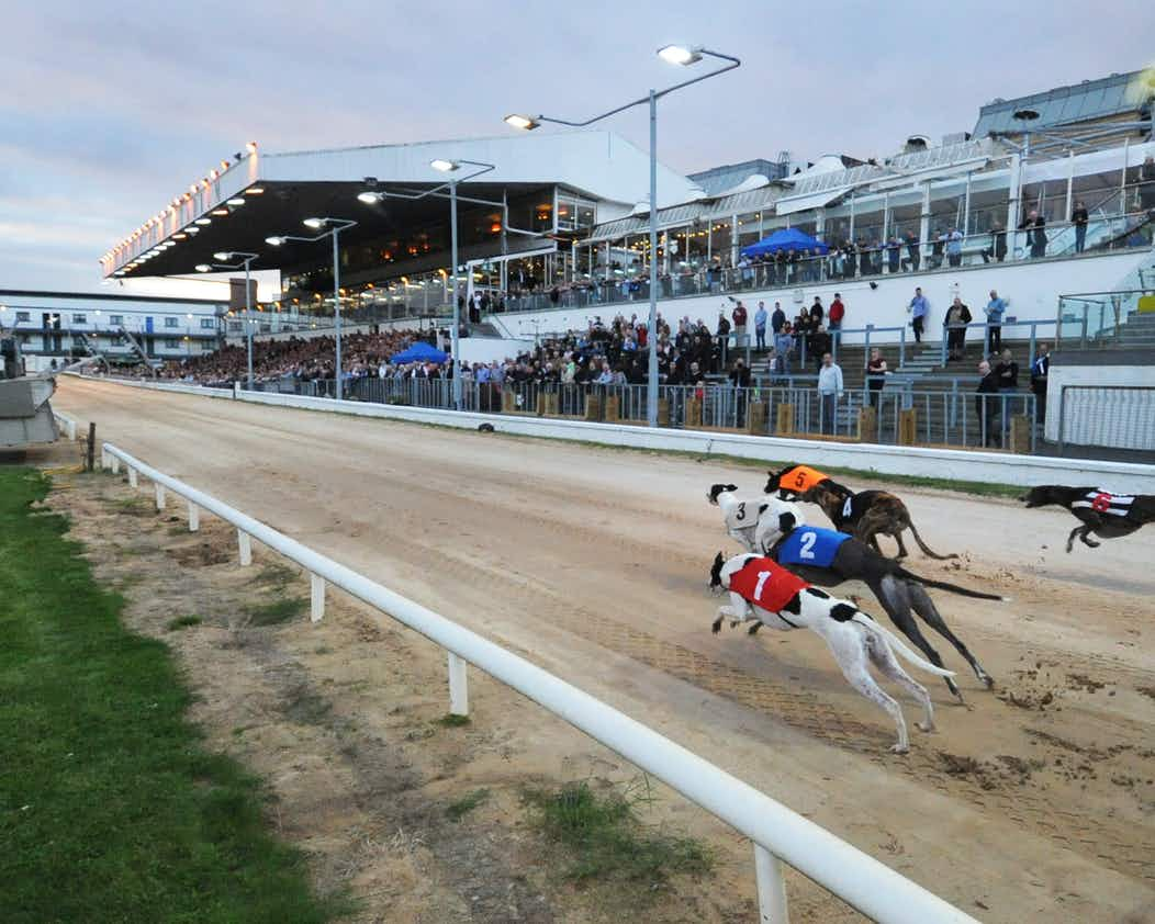 Tickets for Greyhound Racing At Shelbourne Park Stadium