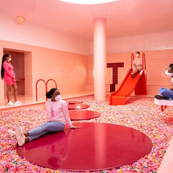 Museum of Ice Cream New York