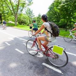 Imagen Alquiler de bicis en Central Park