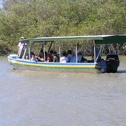 Palo Verde National Park: Jungle River Cruise