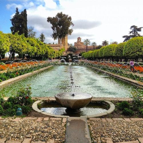Sinagoga, Alcázar y Mezquita-Catedral de Córdoba: Visita guiada
