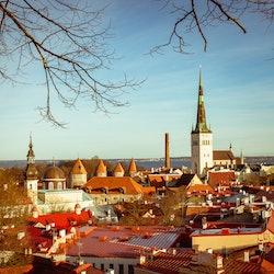 Tickets, museos, atracciones,Tour por Tallin