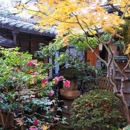 Authentic Kimono Experience at a Machiya House