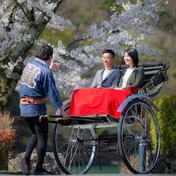 Tickets, museos, atracciones,Tour por Kioto,Excursión a Arashiyama