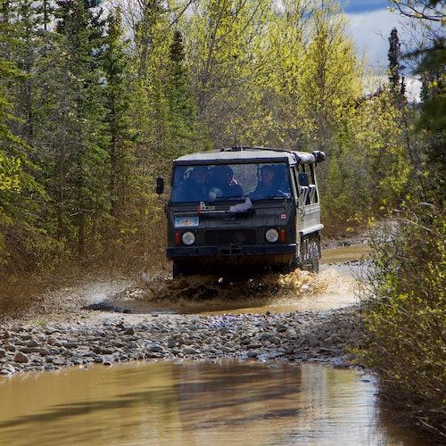 Safari en 4x4 por el Parque nacional Denali