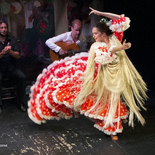 Flamenco Show at Triana Theater