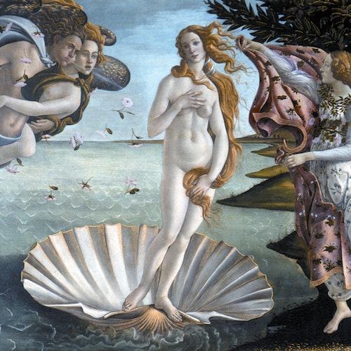 Galería Uffizi: Visita guiada en un grupo pequeño + Sin colas