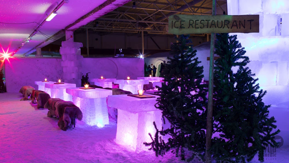 Tickets for Helsinki Sightseeing Tour & Winter World Indoor Park  Image