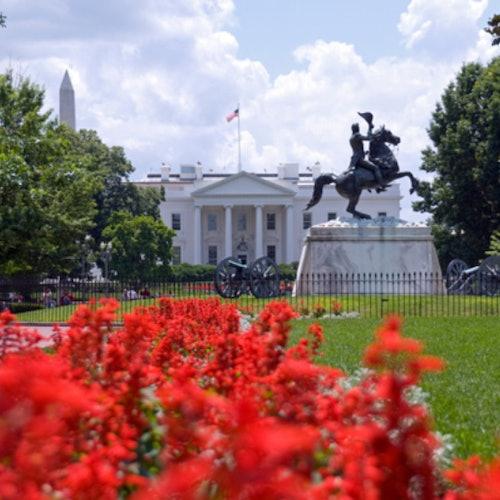 Washington, D.C. Highlights: Guided Bus Tour