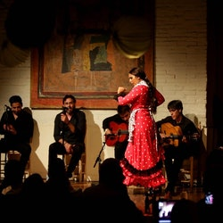 Imagen Flamenco-Show im Tablao de Carmen + Abendessen