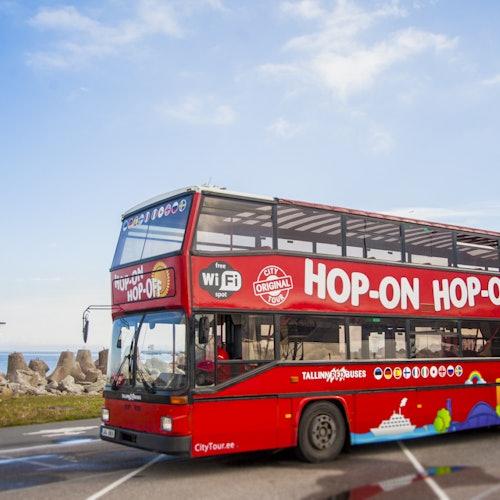 Bus turístico Tallin 24H + Museo de arte Kumu