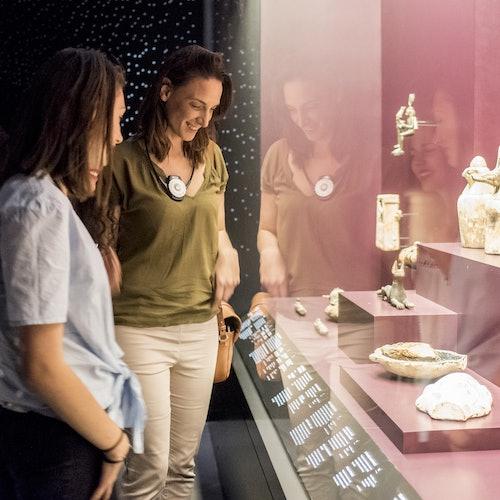 Museo de las Confluencias: Acceso rápido