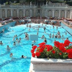 Tickets, museos, atracciones,Tickets, museums, attractions,Balneario Gellért,Gellért Thermal Baths,Balnearios de Budapest,Balneario Gellért