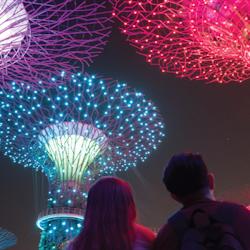 Tickets, museos, atracciones,Tour por Singapur