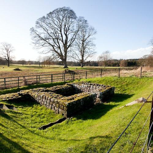 Chesters Roman Fort y Museo - Muralla de Adriano
