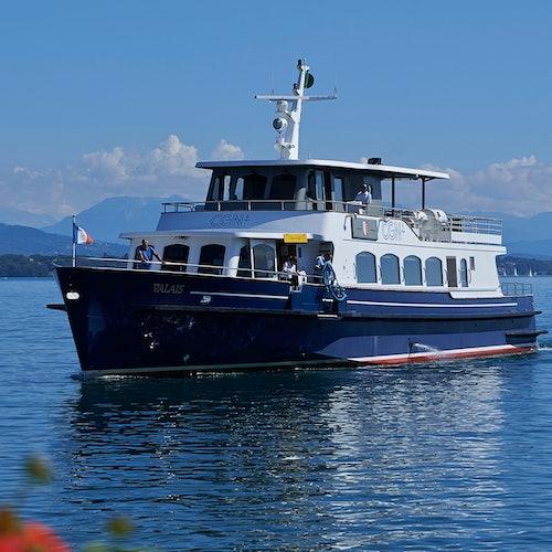 Tour en barco por Ginebra