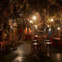 El Bosc de Les Fades: Special Drinks Deal