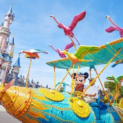 Imagen Disneyland Paris: Salta la Coda (Offerta Black Friday)