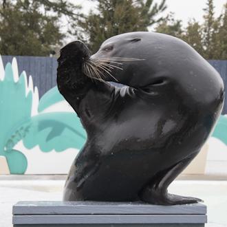 Billets pour Aquarium de New York