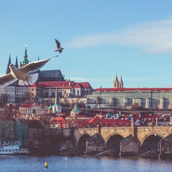 Tickets, museos, atracciones,Castillo de Praga,Sin colas