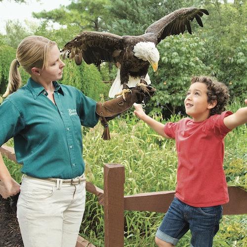 Busch Gardens Williamsburg y Water Country USA