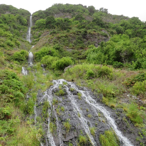 Enchanted Terraces: Guided Madeira Excursion