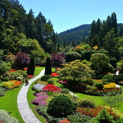 Tickets, museums, attractions,Excursion to Butchart Gardens
