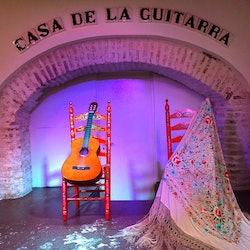 Tickets, museos, atracciones,Espectáculo Flamenco,Triana